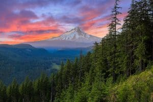 Mt. Hood And Columbia Gorge