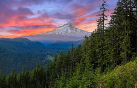 Mt. Hood And Columbia Gorge